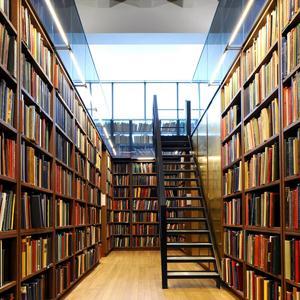 Библиотеки Топчихи